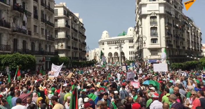 """""""Odejděte všichni"""". 10 tisíc lidí uspořádalo masový protest v Alžírsku"""