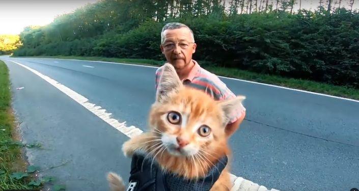 Motorkář a řidič automobilu na dálnici v Belgii zachránili kotě. Video se stalo virálním