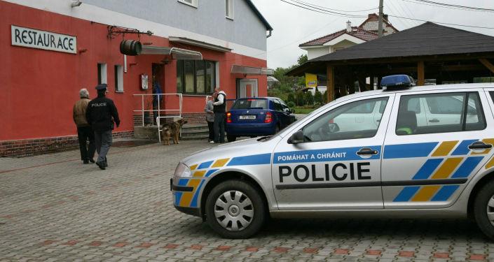 Česká policie. Ilustrační foto