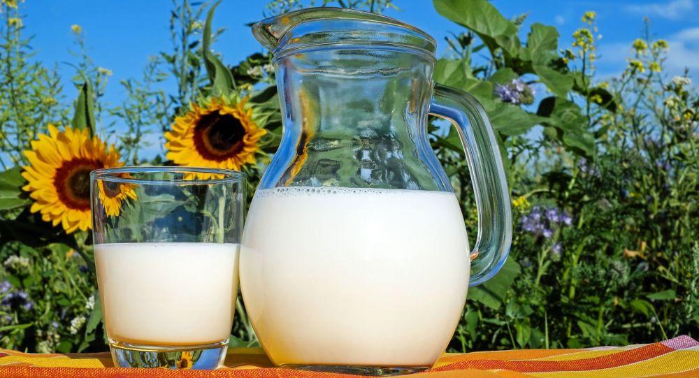 Mléko. Ilustrační foto