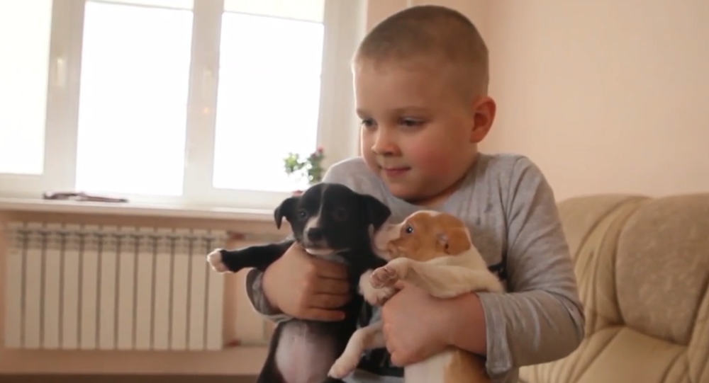 """""""Hlavně je nevyhazujte.""""  Malý chlapec zachránil přes sto zvířat"""