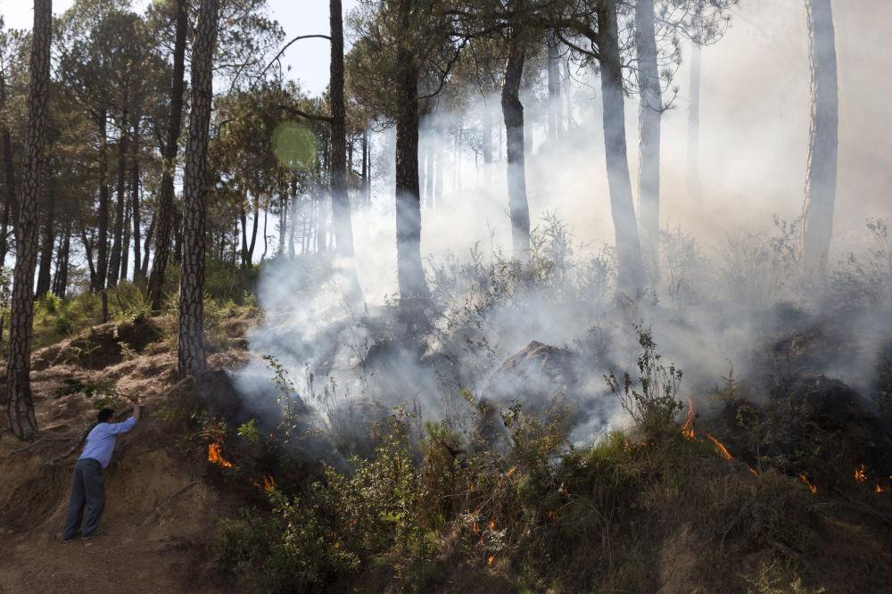 Muž se snaží uhasit požár v lese vedle vesnice na úpatí Himálají v Indii.