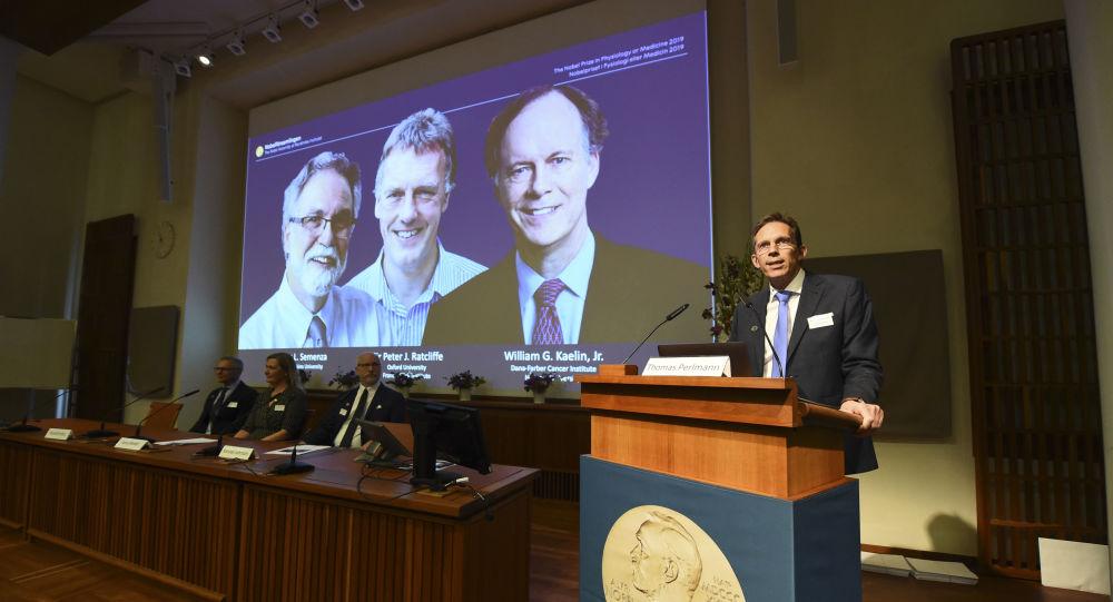 Tajemník Nobelovy komise Thomas Perlmann při vyhlášení vítězů Nobelovy ceny