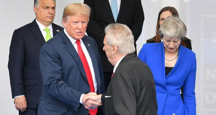 Americký prezident Donald Trump a prezident ČR Miloš Zeman