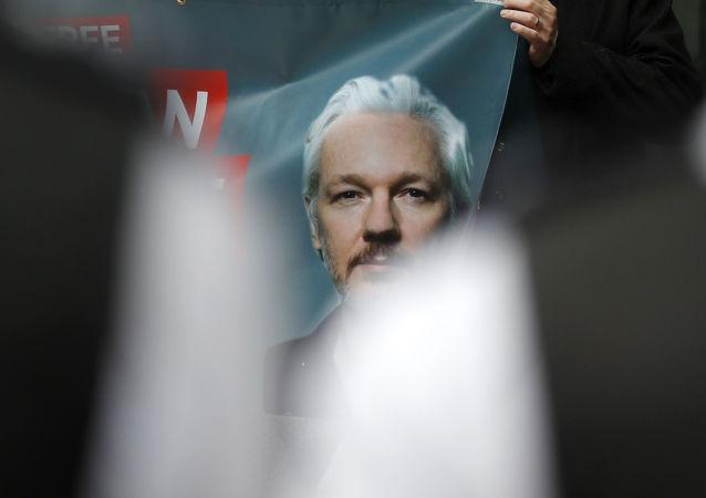 Plakáty na demonstraci na podporu zakladatele WikiLeaks Juliana Assange v Londýně (14. 6. 2019)