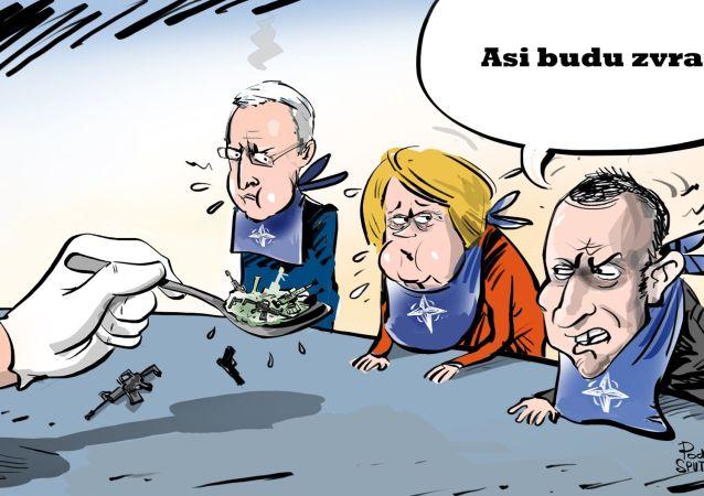 Karikatura USA překrmily NATO svými zbraněmi