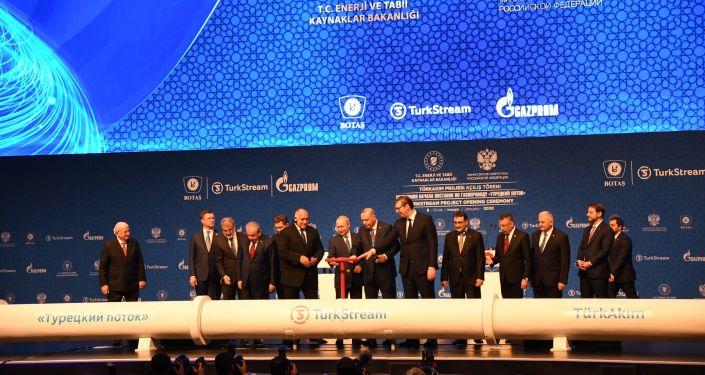 Slavnostní uvedení plynovodu Turecký proud do provozu. Istanbul. 8. ledna 2020