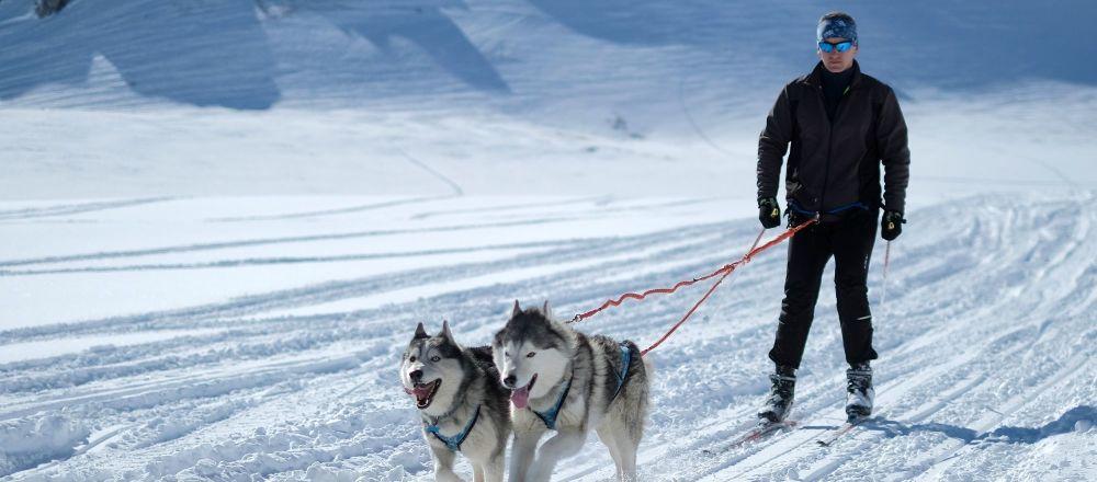 Muž se věnuje skijöringu na území náhorní plošiny Lago-Naki Kavkazské státní přírodní biosférické rezervace