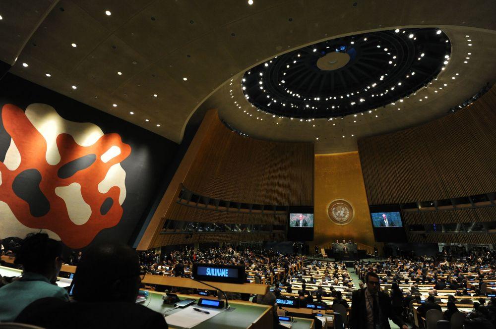 Valné shromáždění OSN: jak to bylo