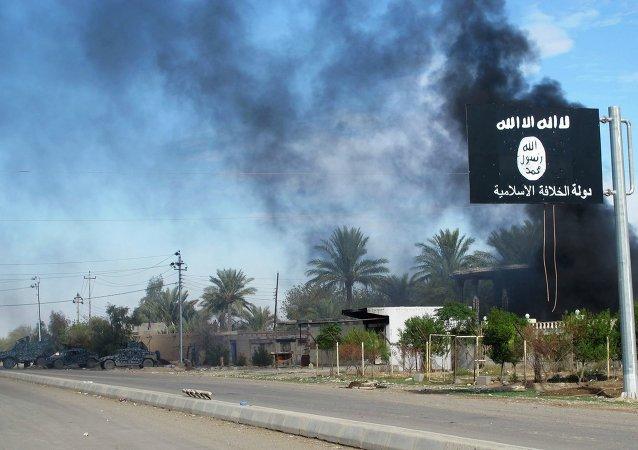 Vlájka Islámského státu