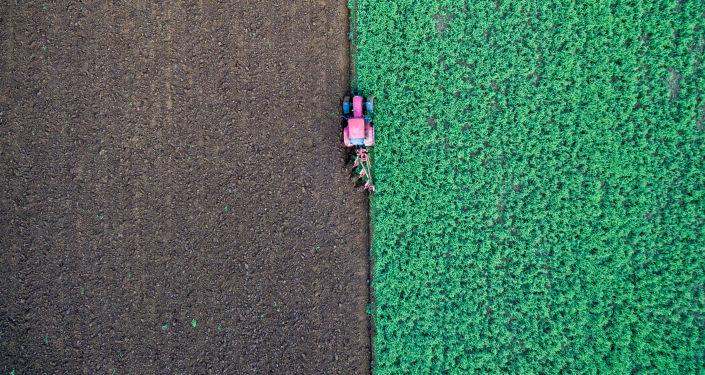 Farmář v traktoru na poli. Ilustrační foto