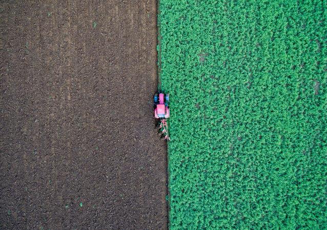 Farmář v traktoru na poli v Německu.