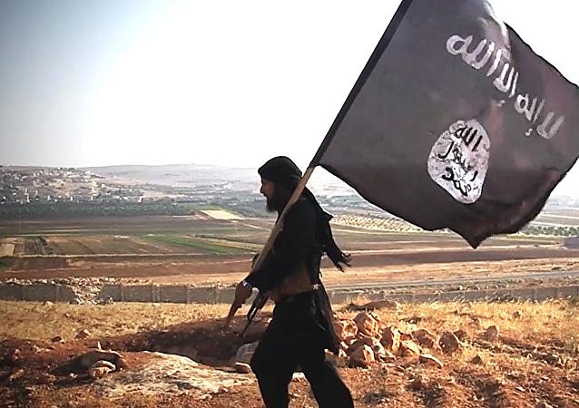 Bojovník IS