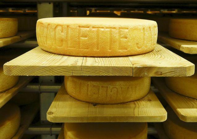 Sýr. Ilustrační foto
