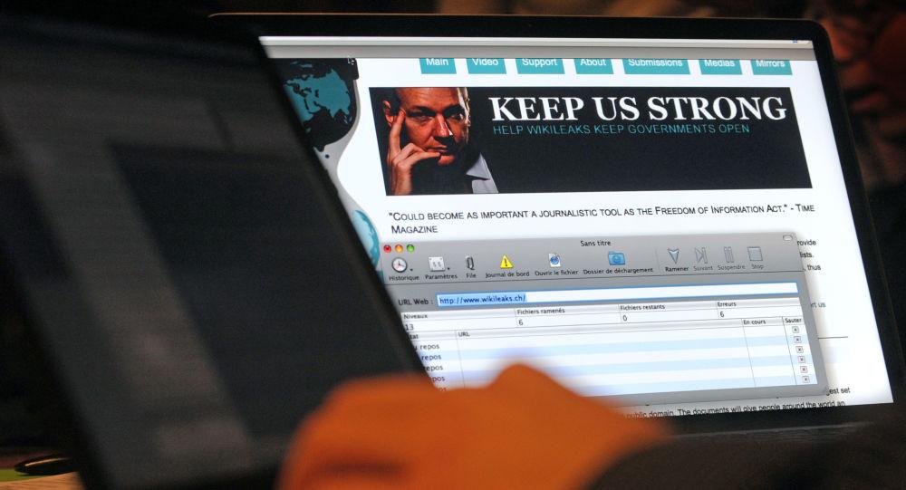 Webová stránka WikiLeaks
