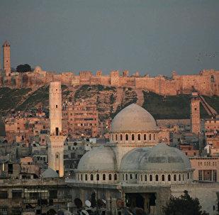 Citadela v Aleppu