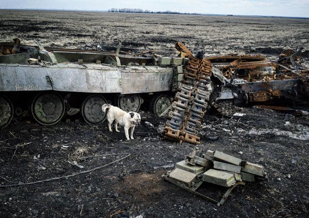 Pes vedle spaleného tanku u Debalceva