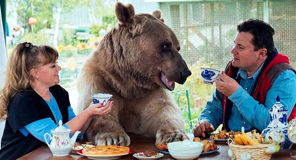 Pantelejinkovi a medvěd Stepan