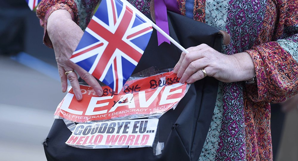 A vote leave supporter holds a poster in Westminster, London, Britain June 24, 2016.