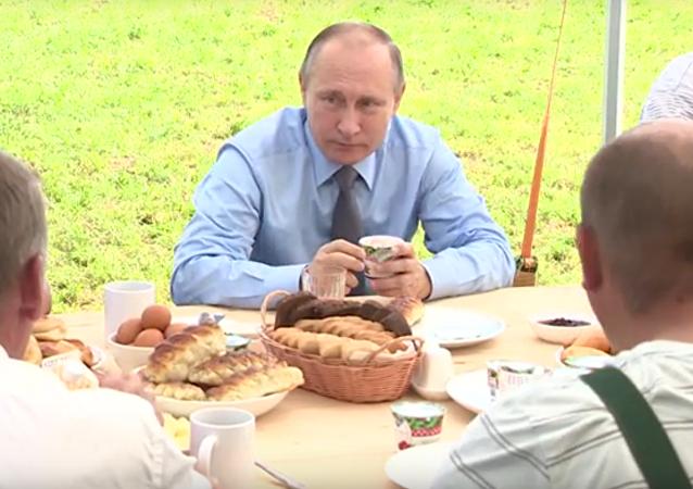 Vladimir Putin řekl, co se dá vyrábět z klikvy kromě vodky