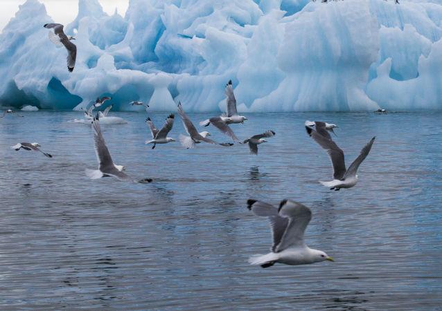 Národní park Ruská Arktida