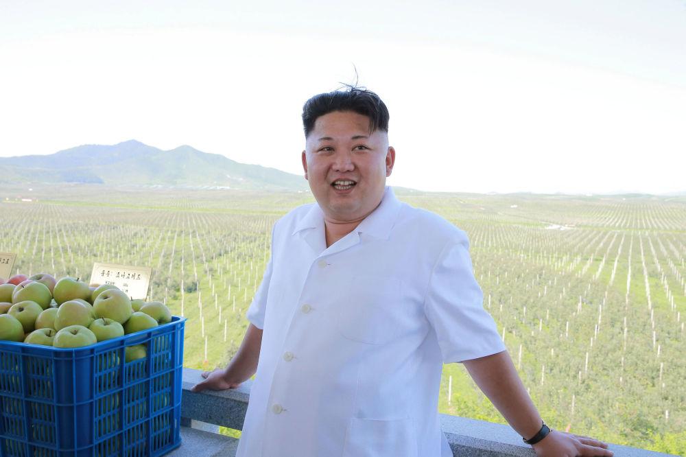 Severokorejský lídr v zemědělském komplexu Taedonggang