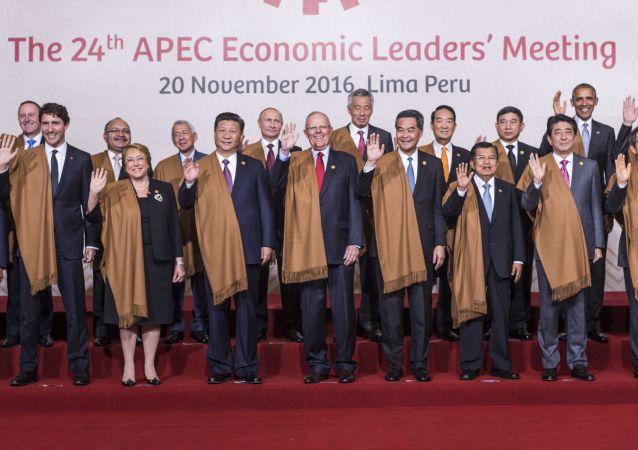 Společné fotografování  na summitu APEC
