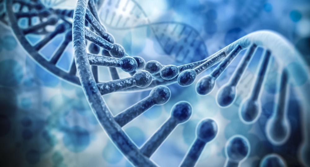 Model RNA