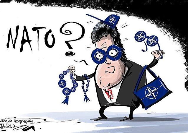 Když se velmi chce do NATO