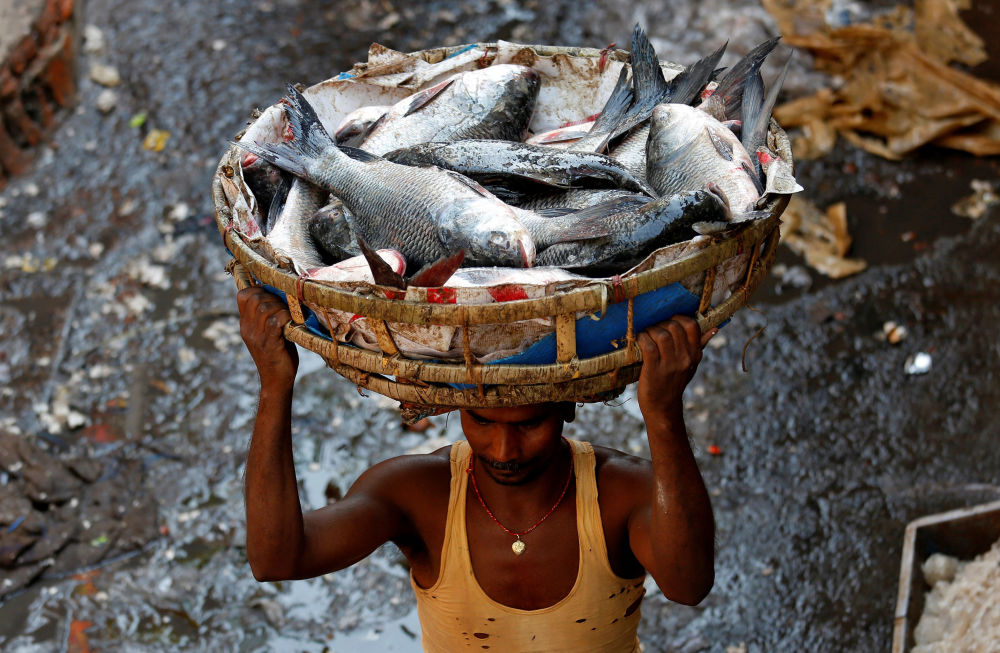 Muž s košem ryb na velkoobchodním trhu na okraji Kalkaty, Indie