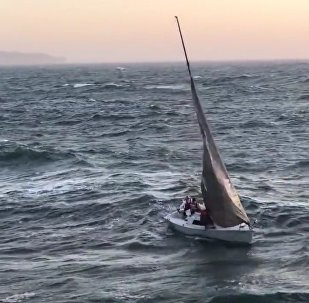 V USA lidé zázrakem zůstali naživu poté, co vlna odhodila jejich jachtu na molo