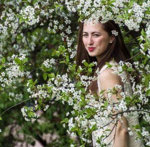 Kvetení jabloní v moskevském parku Kolomenskoje