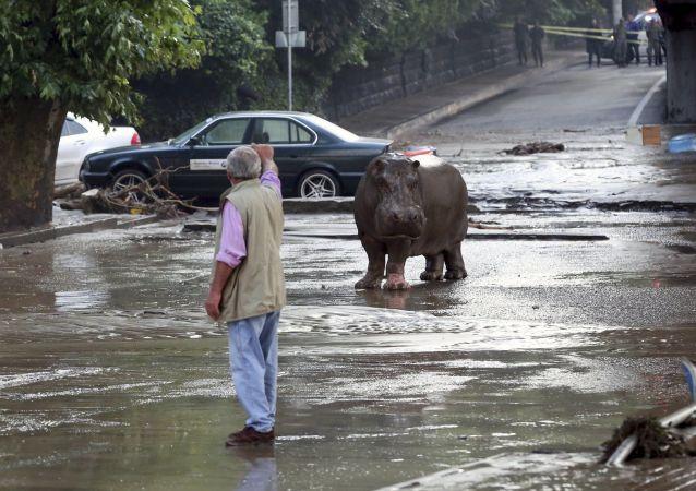 Záplava v Tbilisi