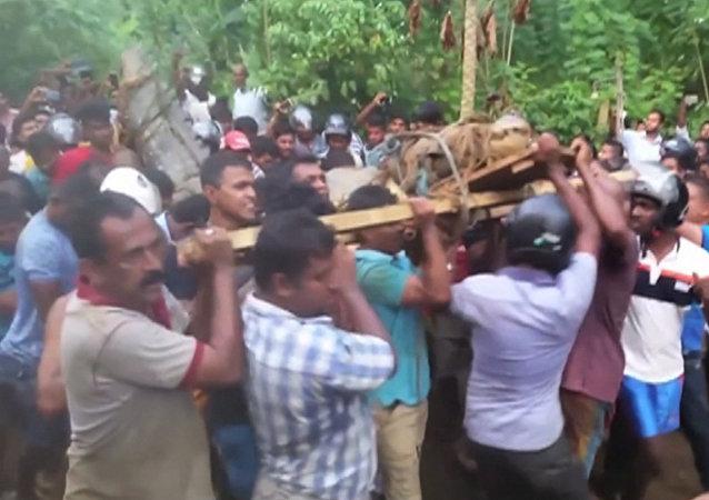 Obyvatelé jedné z vesnic na Srí Lance objevili pětimetrového krokodýla