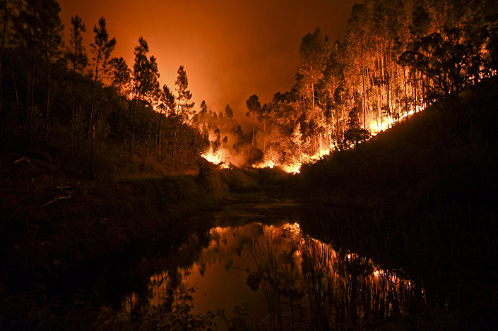 Lesní požár v Portugalsku