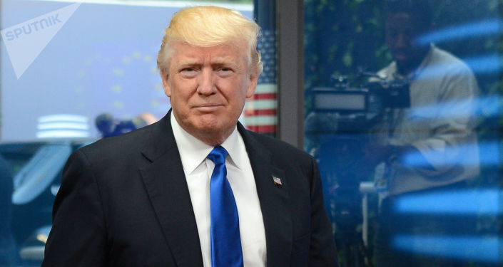 Prezident USA Donald Trump