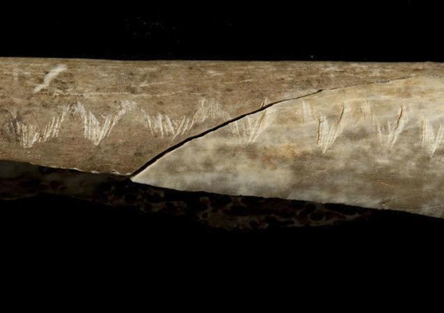 Starobylá kost se podivnými znaky