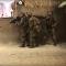 Američtí mariňáci nacvičili 3. světovou válku s Ruskem. Video