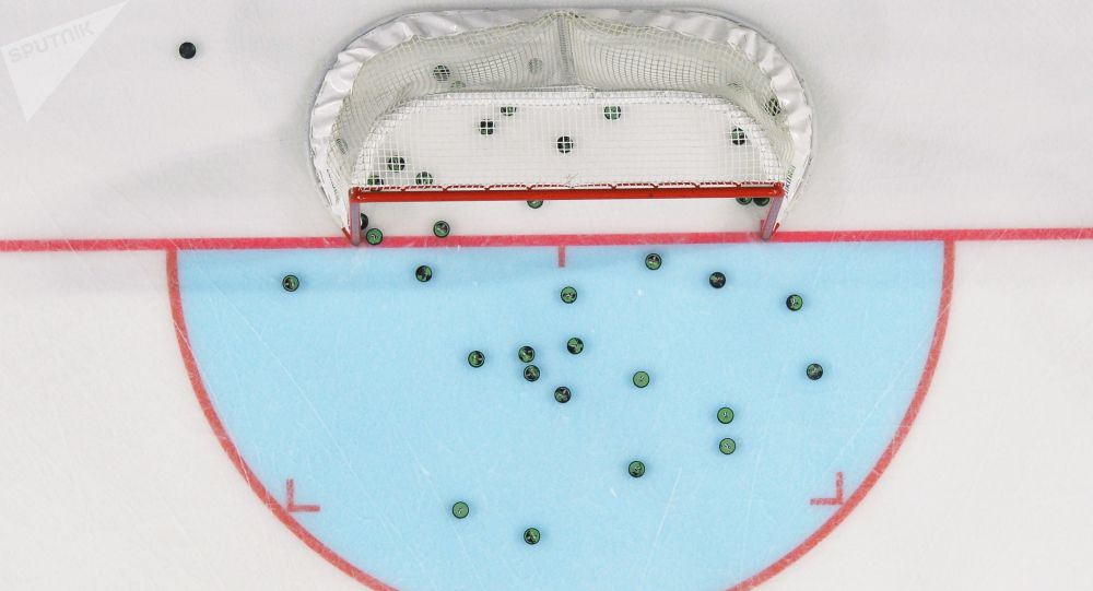 Hokejová brána