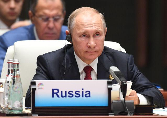 Ruský prezident Vladimir Putin na summitu BRICS