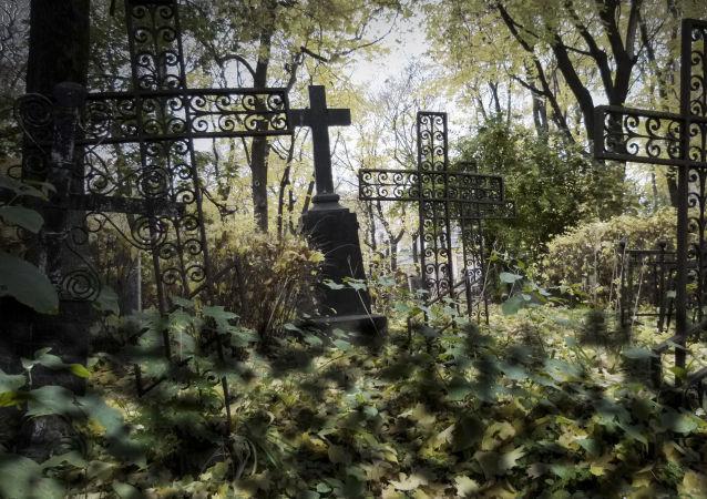 Hřbitov Donského kláštera