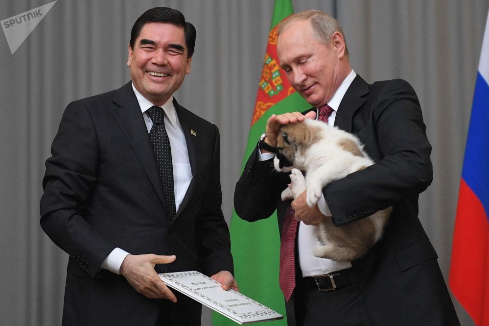 Turkmenský prezident Gurbanguly Berdymuhamedov daroval štěně alabaje prezidentu RF Vladimiru Putinovi