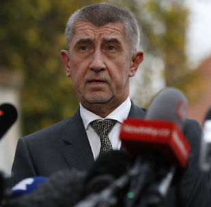 Předseda hnutí ANO Andrej Babiš