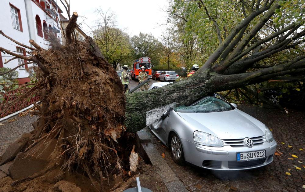 Hasiči vedle stromu, který spadl na auto v důsledku vichřice Herwart v Berlíně, Německo