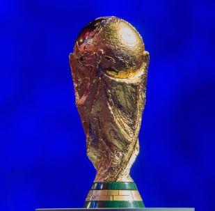 Pohár mistrovství světa ve fotbale FIFA