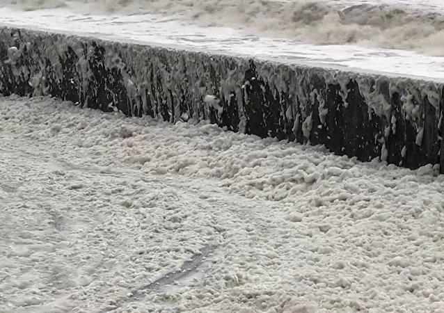 Mořská pěna obsadila pobřeží