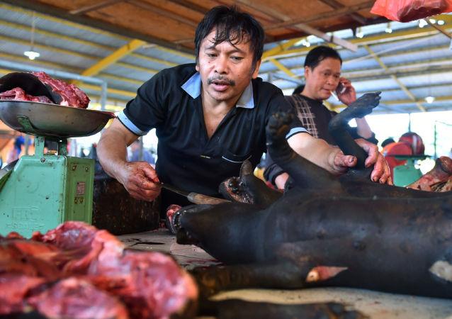 Psi a kočky vystavují na indonéských masných trzích