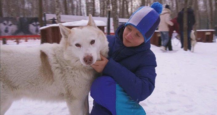 Husky uspořádali pravý svátek pro děti invalidy
