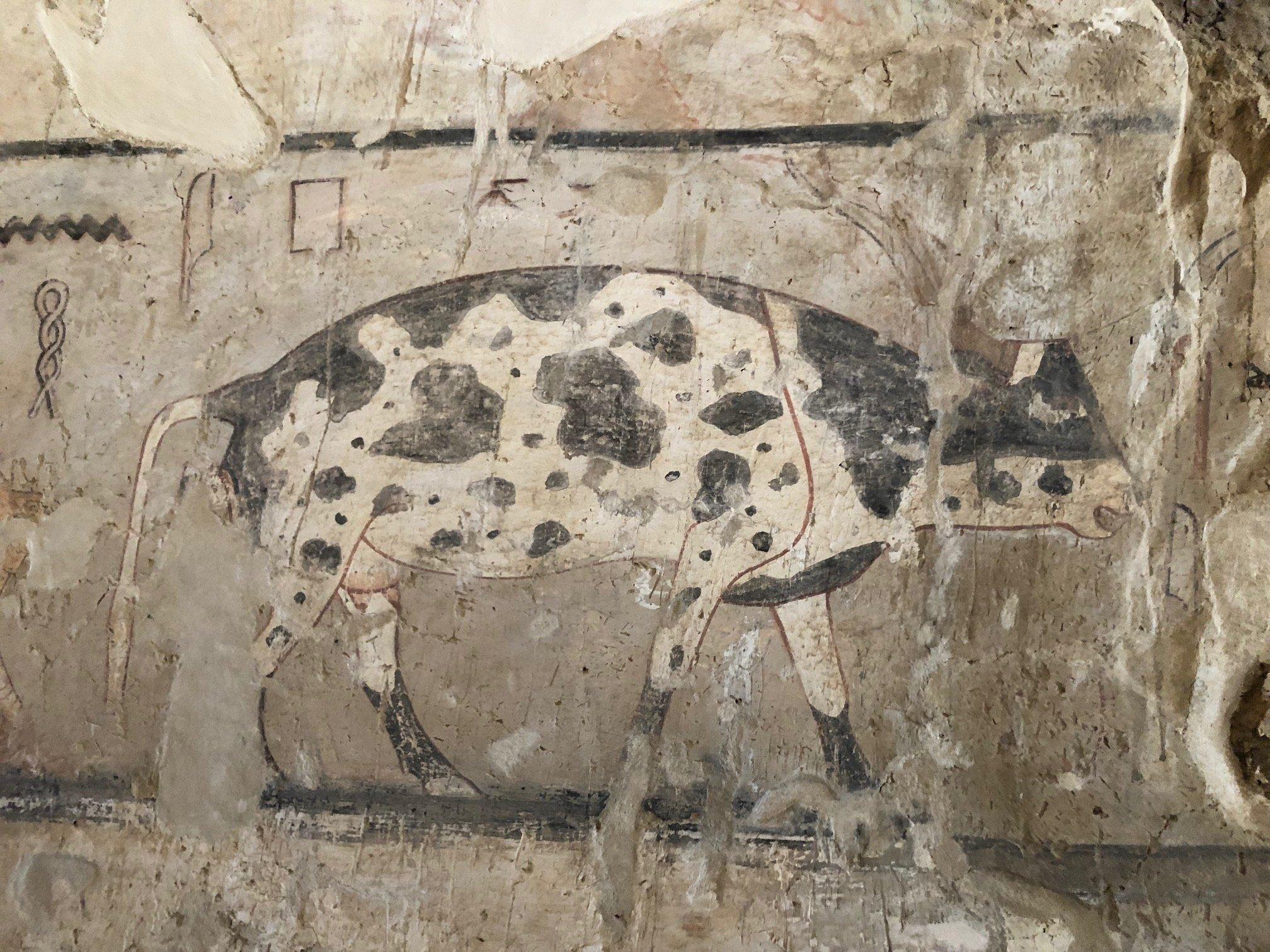 V hrobce byly nalezeny jedinečné barevné nástěnné malby znázorňující každodenní život těch vzdálených časů