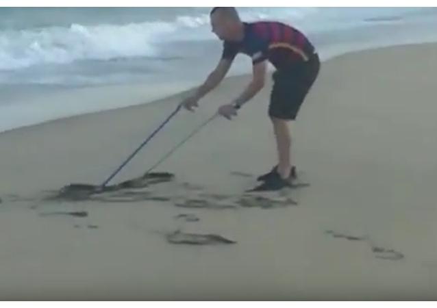 Černá mamba populární turistické pláži